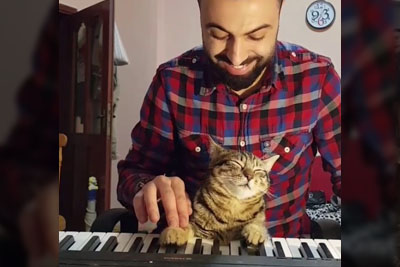 er Plays A Piano With His Adorable Car, Their Footage Is Going Viral