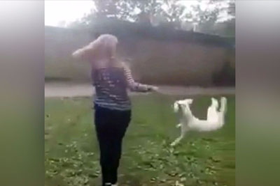SHOCKING: Footage Of Girl Swinging Scared Dog By Neck Is Causing Outrage