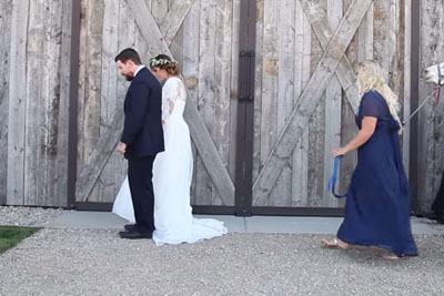 Bride Is Obsessed With Animals. When She Turns Around, She Can't Stop Screaming!