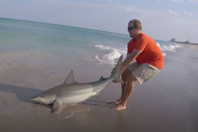 Man Was Pulling A Shark From The Sea. Just Wait To See The Real Reason Behind!