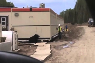 Workers Prank Their Friend, He Almost Got An Heart Attack