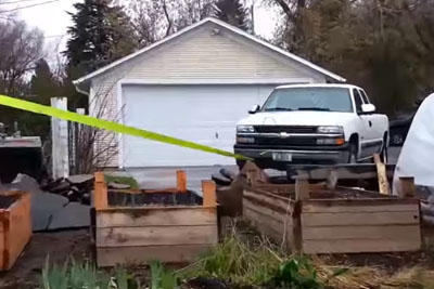 He Used His Truck To Pull Out A Stump Using A Brilliant Way