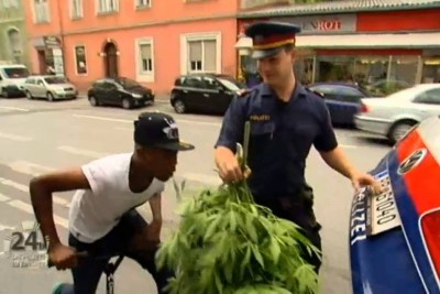 Police Sieze Marijuana Plants, Boy's Reaction In Video Is Priceless