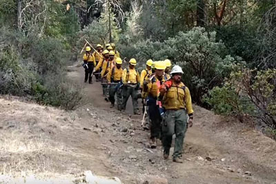 Firefighters Emerge From The Forest, Haunting Words They Sing Go Viral