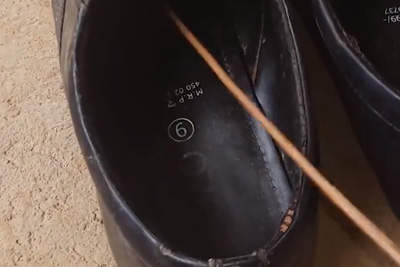 Man Finds Deadly Cobra Hiding In Shoes