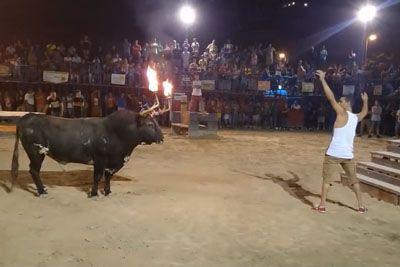 VIDEO: To je razlog, zakaj se z jeznim bikom ni pametno igrati! To mu je storil...