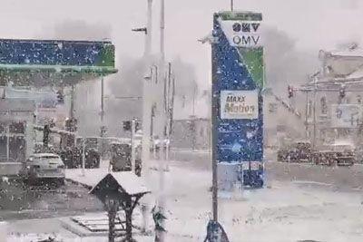 VIDEO: Sneg sredi marca pobelil Slovenijo! Tako danes sneži širom države...