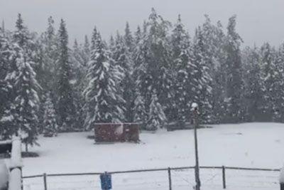 Pogrešate zimo? To so prizori, ki so jim te dni bili priča v Kanadi