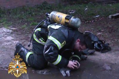 Gasilec pokazal svoje veliko srce: Poglej, kako je mački rešil življenje!