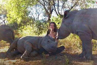 V zavetišču skrbi za ranjene nosoroge: Posnetek ti bo polepšal dan!